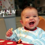 My Baby Led Weaning Recipes