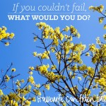 If You Couldn't Fail…
