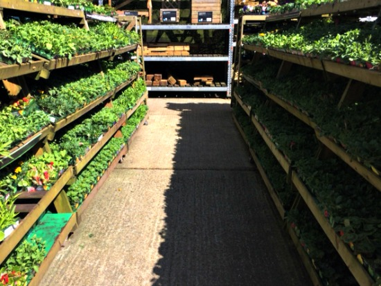 easyGrow in Store