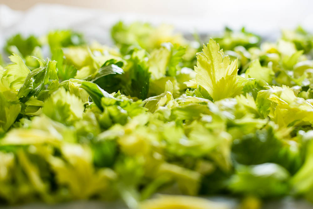 Homemade Celery Salt - Housewife Confidential