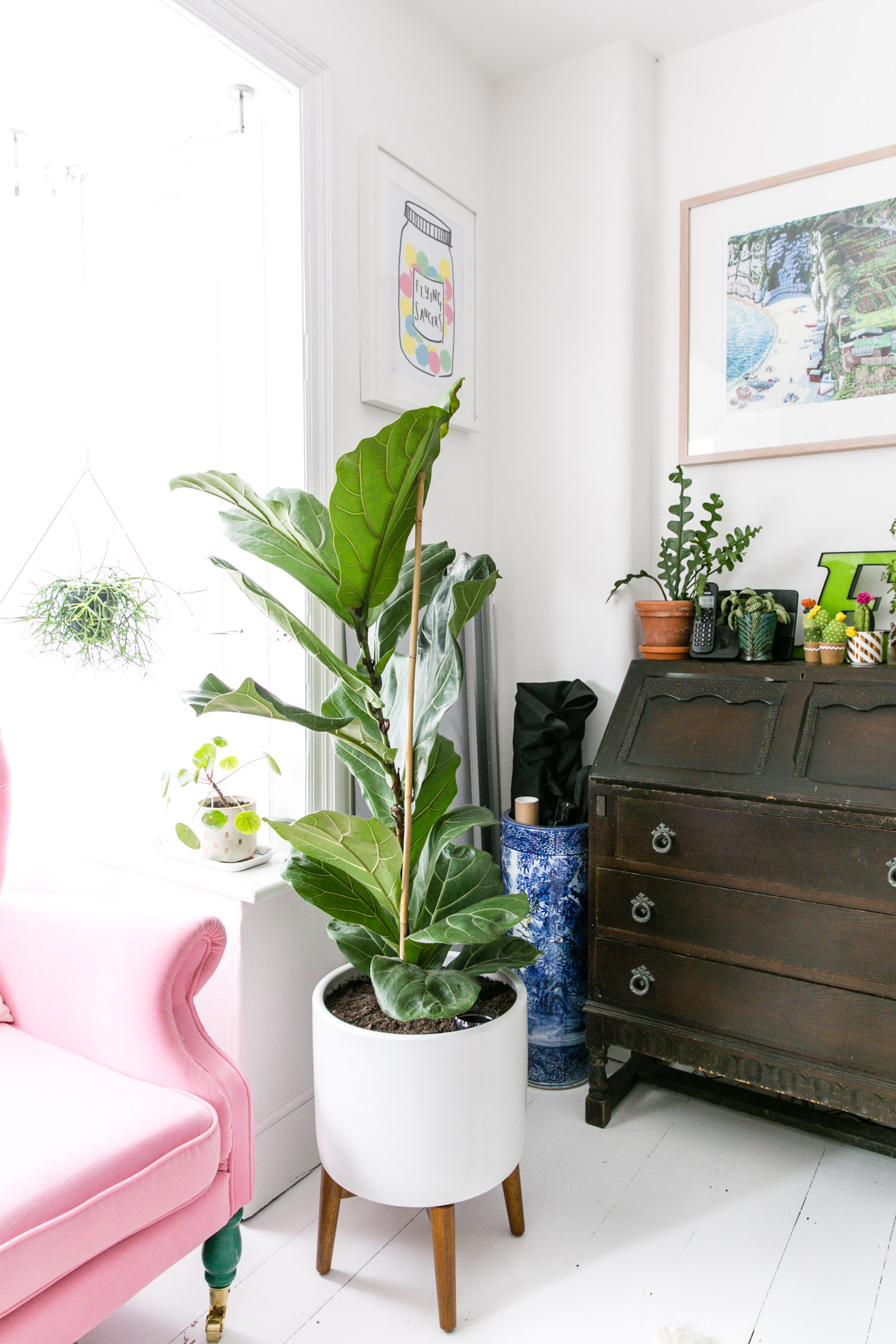 The Colourful Office of Kat Molesworth