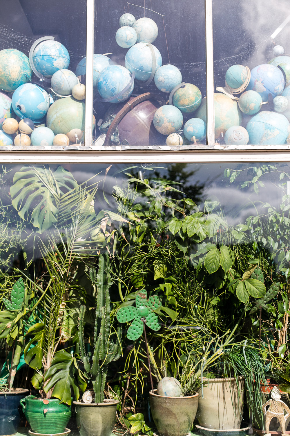 Plant and Globe filled window in Amsterdam © Kat Molesworth Photography